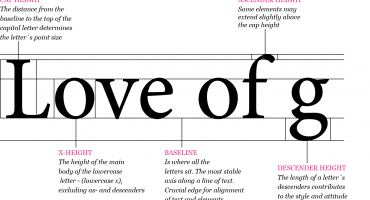 Typography - The Anatomy of Letters