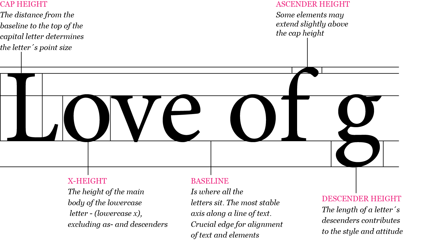 Typography - the Anatomy of Letters and difference between Serifs ...
